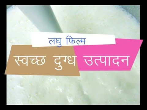 Clean Milk Production in Hindi