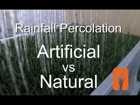 Artificial Grass vs Natural Grass - Percolation Rates