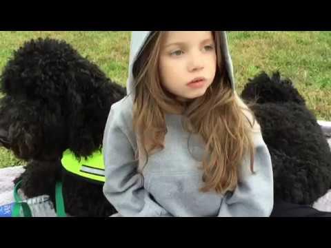 A Thankful Thanksgiving - Kaitlynn's Service Dog