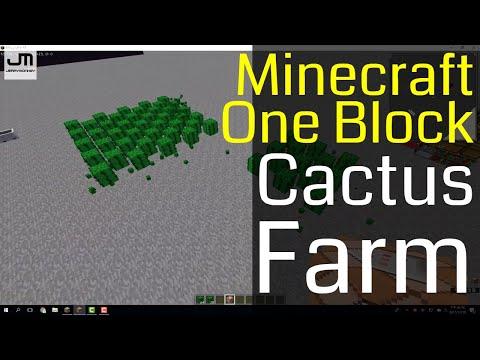 Minecraft -  Make A One Block Cactus Farm