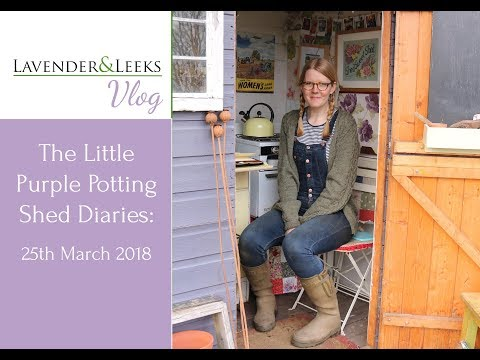Lavender and Leeks Vlog - 25th March 2018 - The Little Purple Potting Shed Diaries