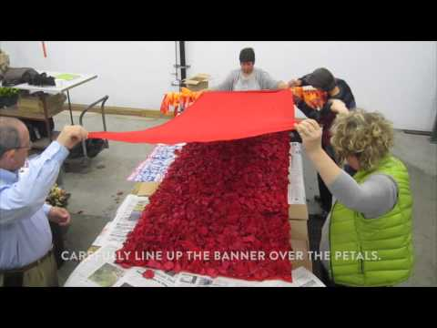 How to Make a Rose Petal Banner with Jodi Duncan AIFD