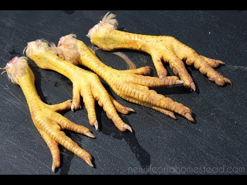 The Surprising Health Benefits Of Eating Chicken Feet