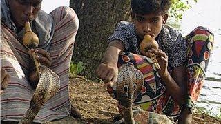 Children Snake Charmers in Sri Lanka