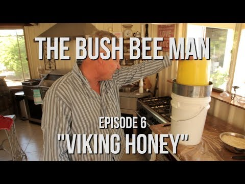 Extracting Honey from extra Honeycomb found on the lid of the hives - Episode 6: