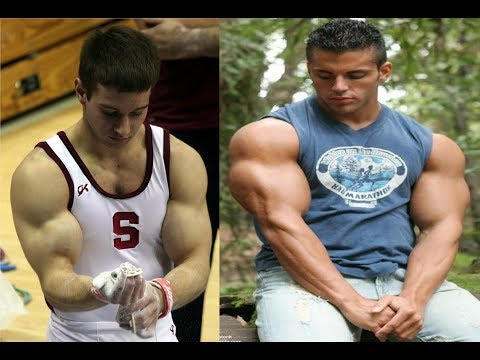 how to get bigger arms at home without weights