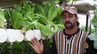 #x202b;هذا الصباح - قرية مصرية تواجه البطالة بالزراعة المائية#x202c;lrm;