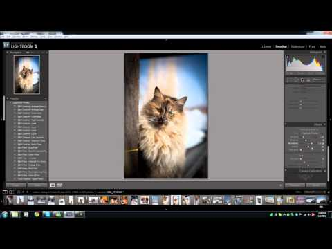 Using Lightroom to create a vignette