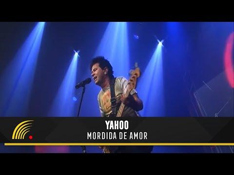 Yahoo - Mordida de Amor - Flashnight