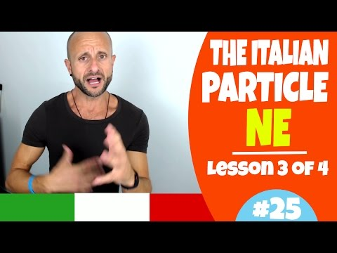 Learn Italian Phrases, Grammar and Culture Q&A - How to Use NE (Lesson 3 of 4) [Ask Manu Italiano]