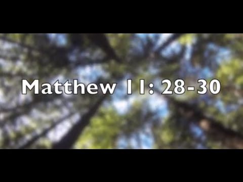 Daily Bible Verse - Matthew 11: 28-30