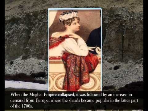 Pashmina History: Tells the Story of Shawls and Wraps