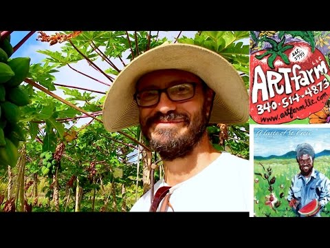 St. Croix Art Farm & Taste of St. Croix Artist Farmer Luca