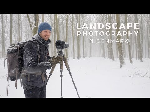 LANDSCAPE PHOTOGRAPHY | Behind the scenes in the Danish woodlands