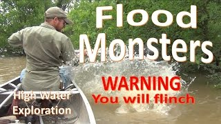 Flood Monsters -Close Encounters and Adventure Abound-