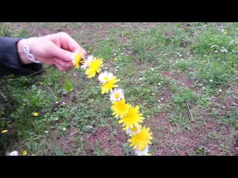 How to make a flower crown from real flowers ?