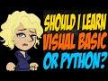 Should I Learn Visual Basic or Python?