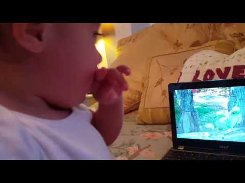 Funny baby watching funny bird videos
