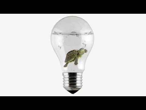 Slower Than a Turtle - The Speed of Electricity