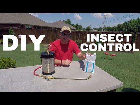 DIY Insect Control