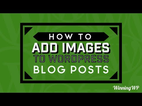How to Add Images to WordPress Blog Posts and Pages