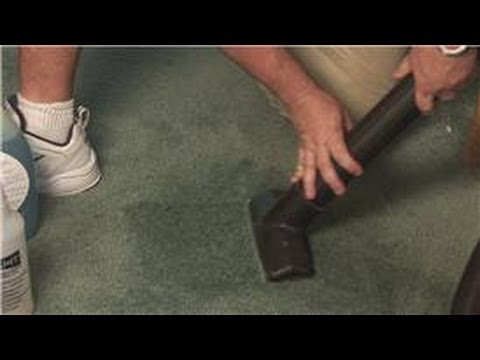Carpet Cleaning : Cleaning Solutions to Remove Mildew From Carpet