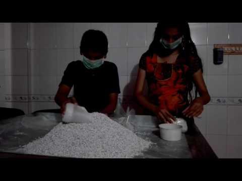 MUSHROOM SPAWN PRODUCTION,  OMANAMUSHROOMS,