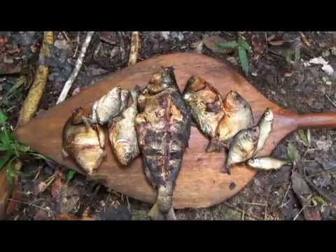 Jungle survival - Cooking fish in the Amazon