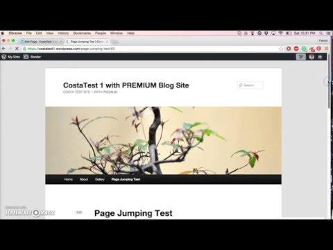 Page Jumping For WordPress