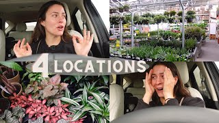 Houseplant Shopping at Big Box Stores! | Lowe's Plant Shopping! Home Depot Plant Shopping!