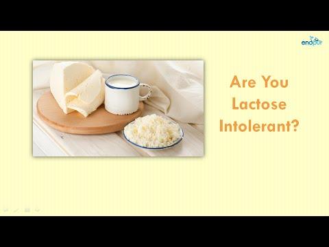 Are You Lactose Intolerant?  |  Lactose Intolerance  |  What is Lactose Intolerance