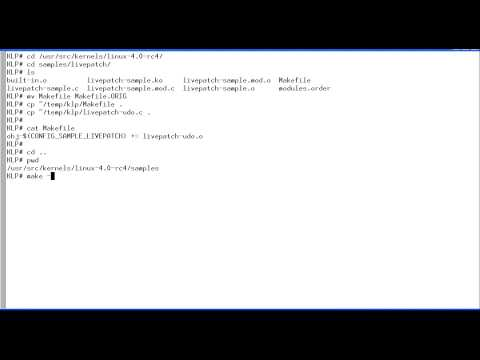 Linux Kernel Live Patching - Extended Version