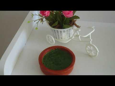 How to Prepare Pudine Ki Chutney Easily (Mint Sauce) (in Urdu)