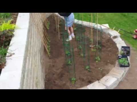 Landscaping for a Vegetable Garden