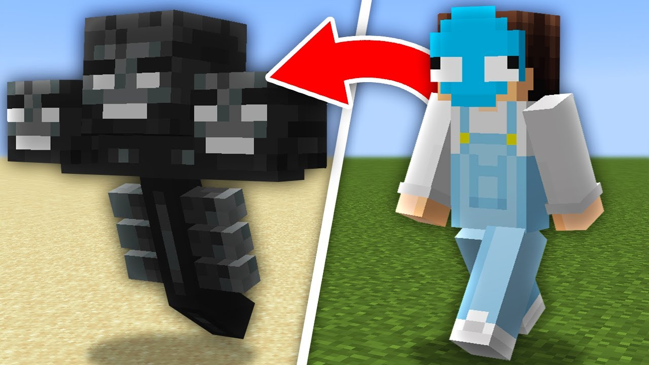 Minecraft, But You Shapeshift Every Minute...