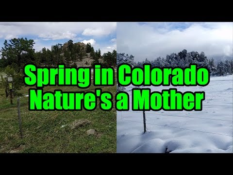 Spring in Colorado - Nature's a Mother