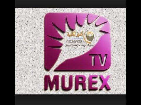 Xxx Mp4 تردد قناة موركس الجديد علي النايل سات 3gp Sex