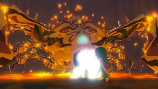 Zelda Wind Waker HD: Gohdan Boss Fight #3 (1080p 60fps
