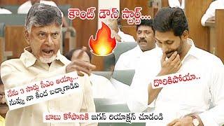 Chandrababu Naidu FIRES & SATIRES on AP CM YS Jagan Mohan Reddy | AP Assembly 2019 | Political Qube