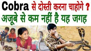 भारत की इस जगह पर हर घर में सांप और इंसान एक परिवार की तरह रहते हैं - Strange But True
