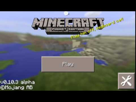 How to fly in mcpe servers