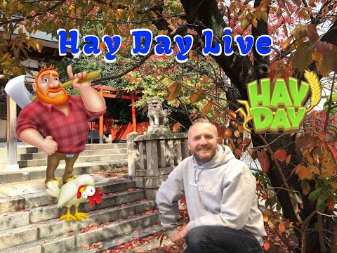 Hay Day Live - How to Catch Frogs - Method By Phan Tom