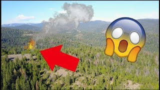 SCARY FOREST FIRE.