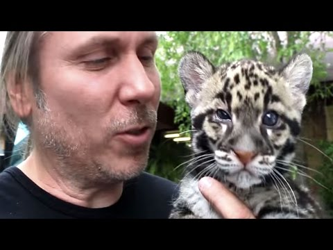 Baby Animals At The Columbus Zoo! | BRIAN BARCZYK
