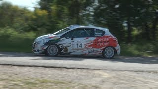 Josep Bellmunt - Jordi Puchol | Rally Empordà 2018 | Peugeot 208 R2