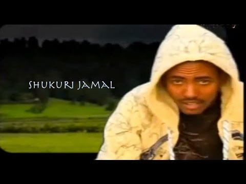 Maal Baaccaa : Shukurii Jamal - PlayItHub Largest Videos Hub