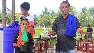 Woow Jelas! Akhirnya Murai Batu Borneo RAMPANGI Bisa Juara 1 Perdana Di LatPres Aditya Singkawang