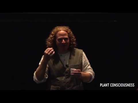 Intuitive Herbalism, Nathaniel Hughes - Plant Consciousness