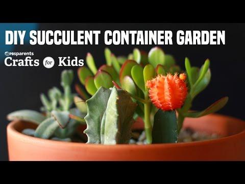 DIY Succulent Container Garden | PBS Parents | Crafts for Kids