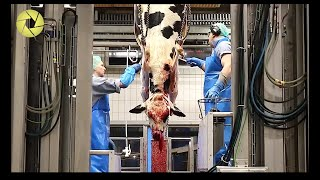 Inside TheMeatProcessingPlant- Inside The FoodFactory | Incredible Process Worth Watching HD